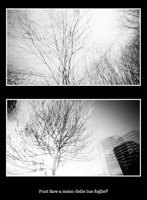 interno16 Fotoritratti - Schizografie Brescia - interno16 Marco Badilini - %Category Ritratti - %Tags - fotografia ritratto brescia lombardia